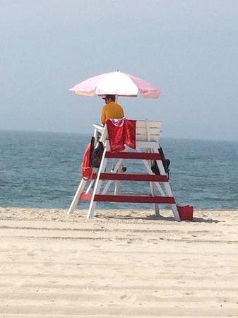 Beach Shack : view from the beach