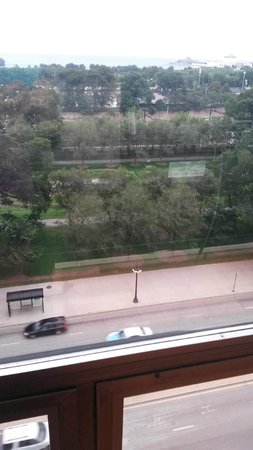 Chicago's Essex Inn: Park view from room