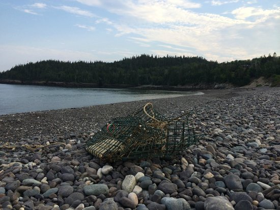 Lobster Trap on Jasper Beach