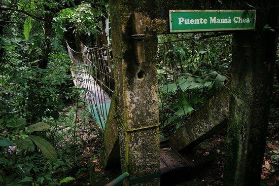 El Valle Panama Hot Springs: Canopi al Chorro macho