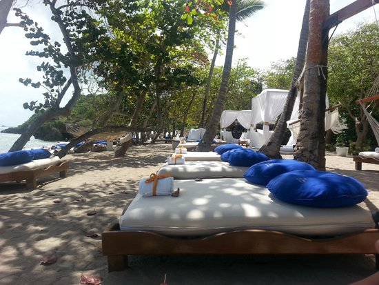 The Tropical at Lifestyle Holidays Vacation Resort : Serenity Beach