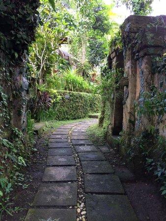 Ubud Sari Health Resort: The way to our room