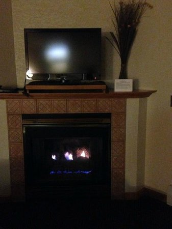 Wildwood Inn: TV and Fireplace