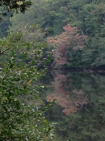 Delaware Water Gap / Pocono Mountain KOA: Hidden Lake