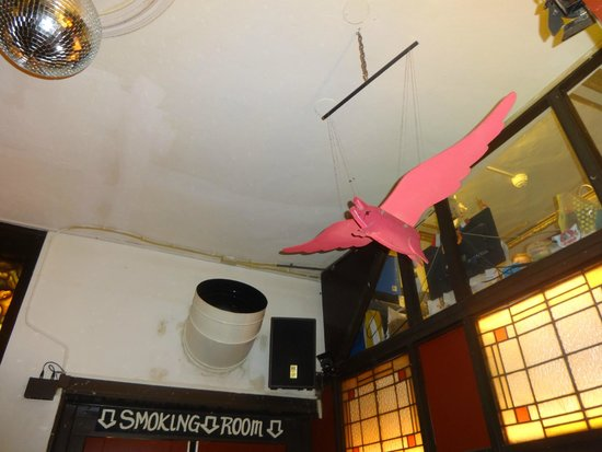 Flying Pig Downtown: The Flying Pig!