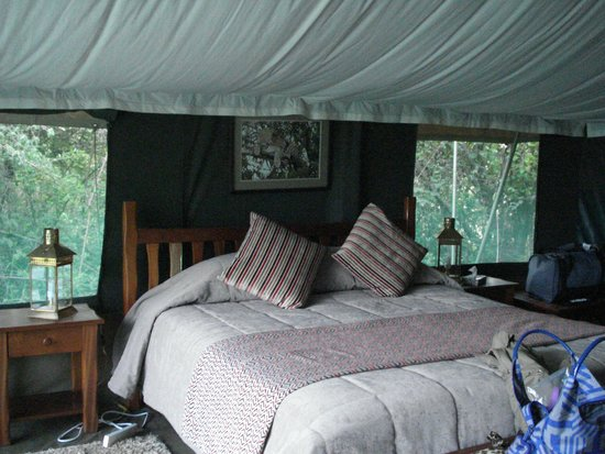 Ilkeliani Camp : Tent interior, huge bed!