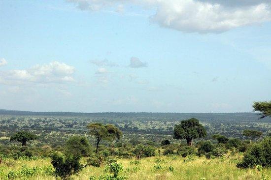 Maweninga Camp: View across Tarangire
