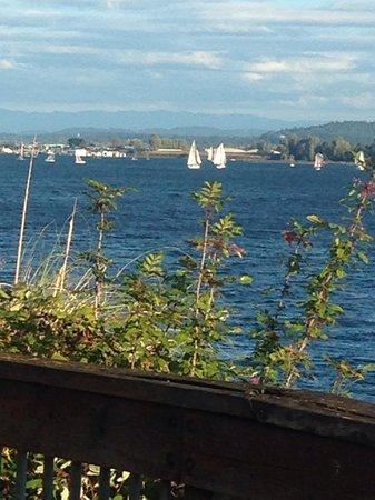 Beaches Restaurant & Bar : View from the deck