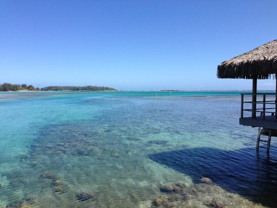 InterContinental Moorea Resort & Spa : View from bungalow