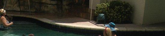 Seminole Hard Rock Hotel Hollywood: notice the mold at pool rim