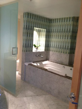 Seminole Hard Rock Hotel Hollywood: nice whirlpool/tile/and live plants in room