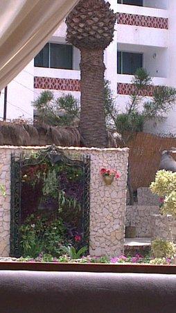 Hotel Argana : garden area