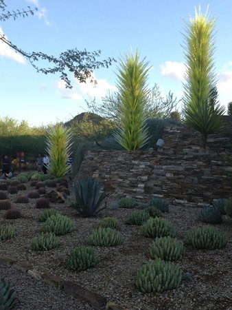 Desert Botanical Garden: Chihuly installation amidst the native plants.
