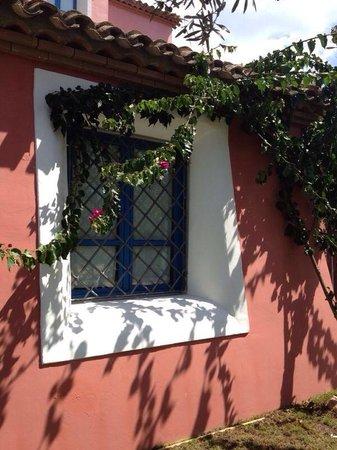 Aparthotel Villa Peonia: Finestra appartamento