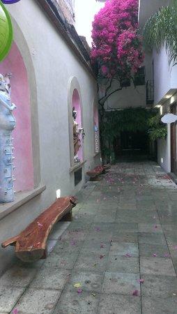 Casa de Las Bugambilias B&B: Passage to rooms