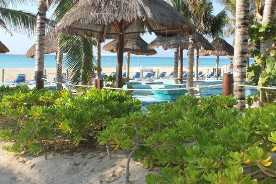 Sandos Playacar Beach Resort : grounds