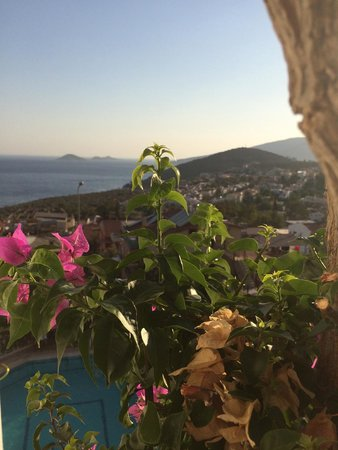 Kelebek Hotel: View from the balcony
