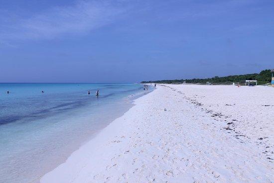 Sandos Playacar Beach Resort : beach area