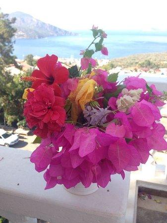 Kelebek Hotel: View fro breakfast terrace