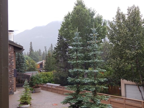 Banff Park Lodge Resort and Conference Centre: Overlooking the back terrace