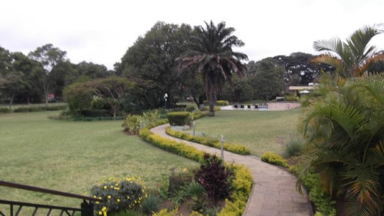 Mount Meru Hotel: Another view of the lawn/garden in back of the hotel.