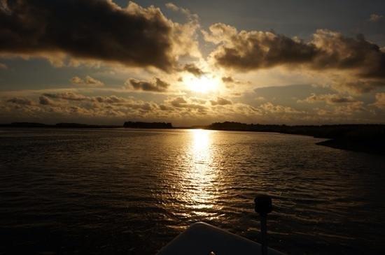 Flipper Finders Boat & Sea Kayak Tour Co.: amzaing sunset