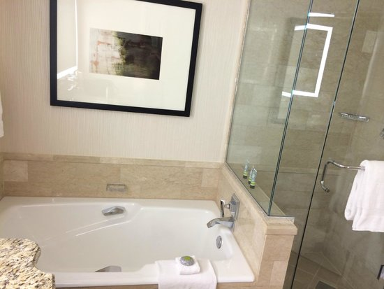 Four Seasons Hotel Las Vegas: Great Tub, and Shower