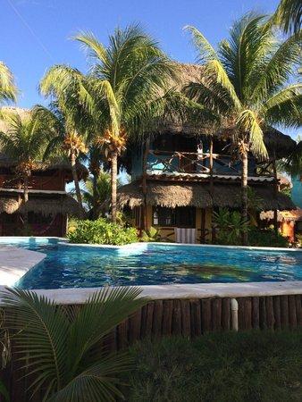 Hotel Casa Palapas del Sol : Pool