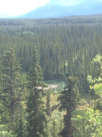 Annie Lake Cabins : View