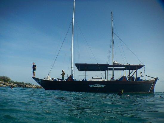 Blue Melody & Black Pearl Sailing: SEASIDE VIEW