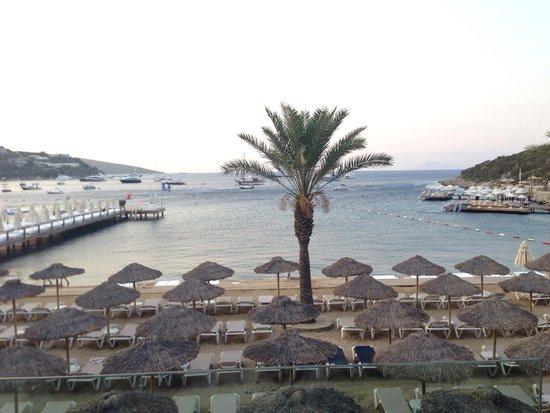 Voyage Turkbuku: Beach in the evening