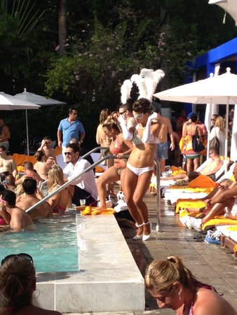Shore Club South Beach Hotel: Pool party craziness