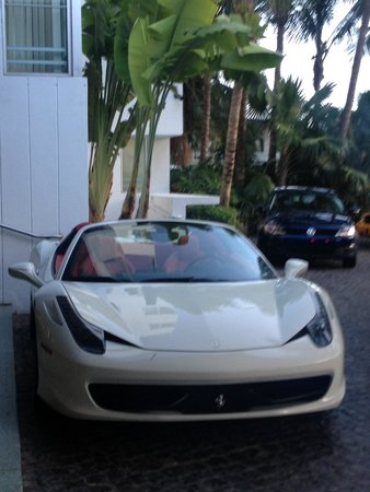 Shore Club South Beach Hotel: So many nice cars
