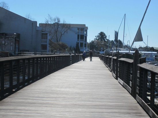 Cap'n Rod's Lowcountry Plantation Tours : View of the Harborwalk