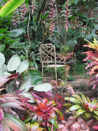 Hunte's Gardens : Colorful sitting area