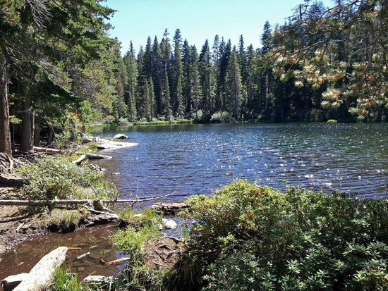 Mt. Tallac Trail: Floating Island Lake. This was the destination of lots of hikers.
