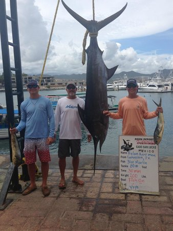 Fish On - Private Charters: Dad & his sons with the catch of the day!