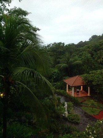 Parador Resort and Spa: вид из номера 323