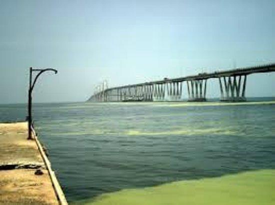 La vereda del lago Maracaibo: y lo mejor es que tiene una hermosa vista hacia el puente sobre el lago
