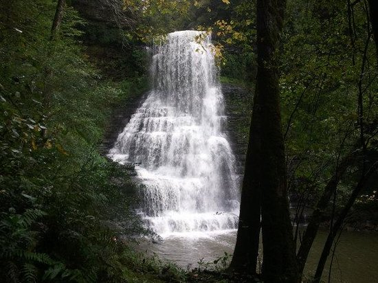 Evins Mill: Beautiful waterfalls  just a hike away.