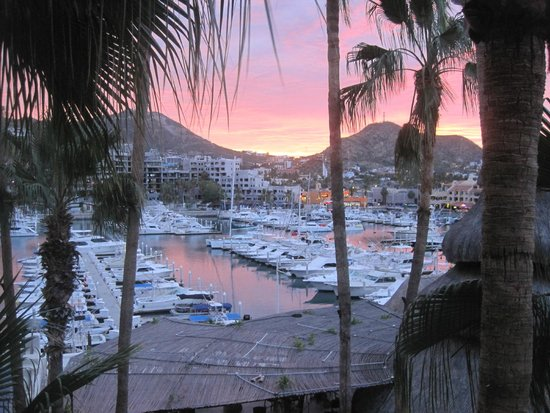 Marina Fiesta Resort & Spa: Cabo Sunset