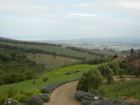 Uva Mira Mountain Vineyards: View of False Bay