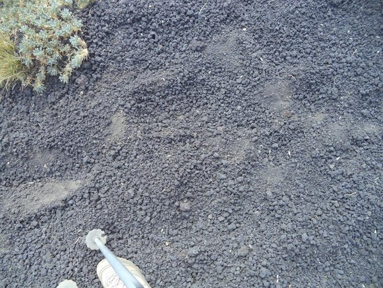 Etna People: Volcanic Ash you walk on up the mountain!