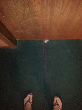 Alexis Park Inn & Suites: Entrance to room -  torn carpeting