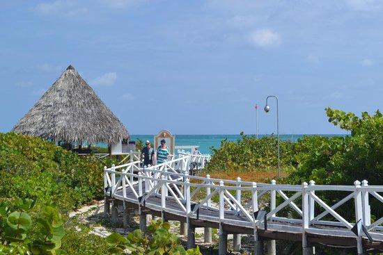 Melia Las Dunas : boardwalk to the beach bar and beach!