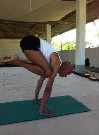 Univesal Yoga Center
