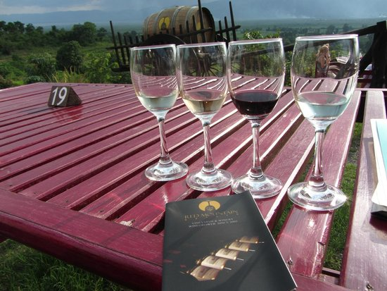 Red Mountain Estate Vineyards & Winery: Amazing wines