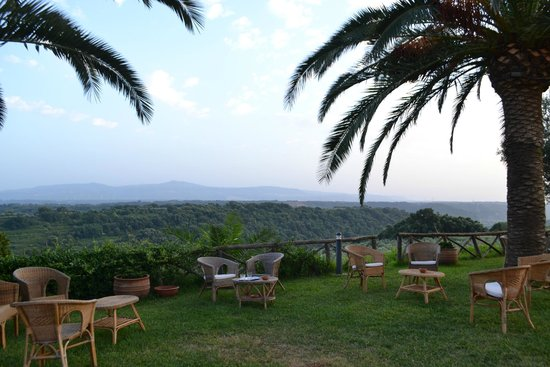 Agriturismo Le Carolee: the view from the breakfast tables!