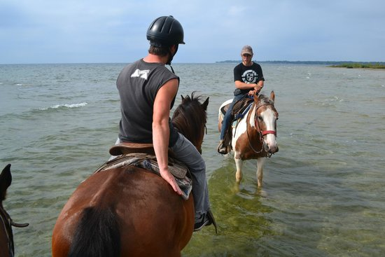 Ambiance by the Falls Bed and Breakfast : Horseback riding in Niagara ! 30 min from the B&B