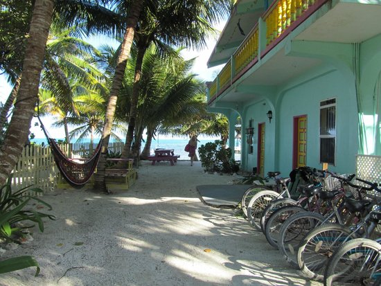 Barefoot Beach Belize: Main building looking out from our deck. Beach in distance.